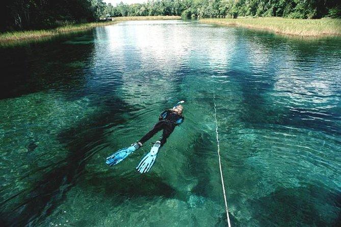 MÁS FOTOS, Snorkel Or Dive The Amazing Rainbow River Florida