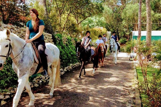 This amazing experience will begin in a charming farm, located only 10 minutes away from Lisbon and 5 minutes from the beach, surrounded by an amazing forest with breathtaking sights over the ocean. <br><br>The experience will take you into the woods and then down to the beach, riding lovely horses, enjoying the nature and breathing fresh air. The experience on horse takes about 2h to 2h30. <br><br>After the ride in the woods, we head back to the farm where a glass of wine and some local cheese awaits you. <br><br>Departure time can be personalized.