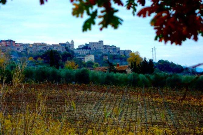 Organic wine day tour from Rome, Lago de Bolsena, Itália