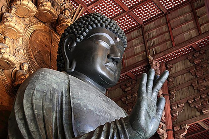 Nara City is the old capital city of Japan and the birthplace of Japanese Buddhism because of which a lot of Buddhist temple was built and many of them are now well conserved as World Heritage.