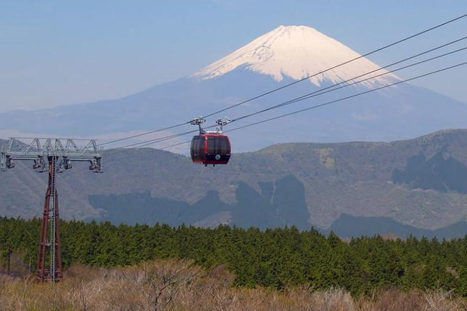 Exciting Hakone - One Day Tour from Tokyo, Hakone, JAPAN