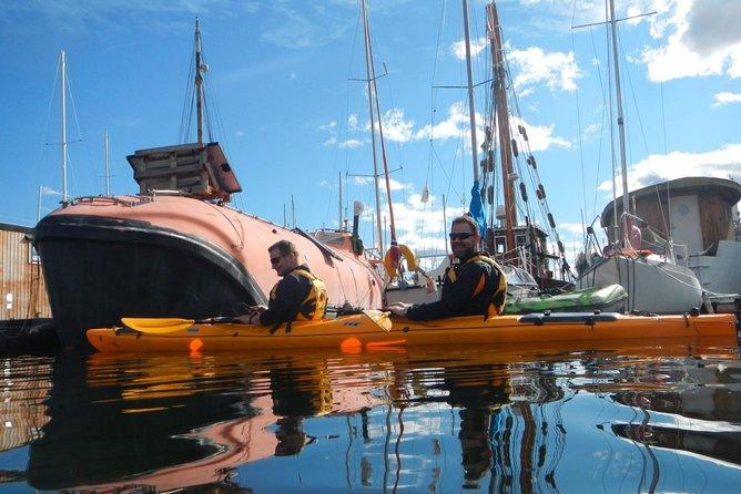 2- hour kayak trip on the Oslo Fjord, Oslo, NORUEGA