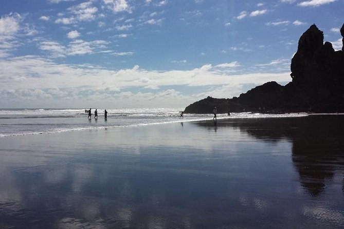 This tour takes you to the rugged west coast and begins with a visit to the Arataki visitor centre to learn a about the local area's history and access to some amazing treks before exploring the amazing black sand Piha beach and nearbyfalls and walking trails.
