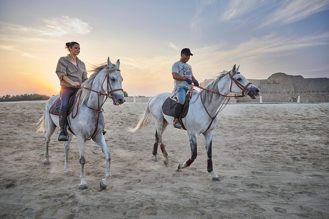 Elegant. Majestic. Distinctive. Risen from the heart of the desert, the pure blood Arabian horse is a breed like no other. Brace yourself for an age old recreational activity that will leave you amazed at the beauty of the desert's survivor as you ride across the stunning skyline of the dipping sun by the Karbabad beach and Bahrain Fort!<br><br>Begin your unforgettable ride at the Equestrian Centre, pass by some quaint villages and ride towards the Bahrain Fort for a picturesque view of the sunset. Continue your journey towards the Karbabad beach for a breezy ride and return to the Equestrian Centre.