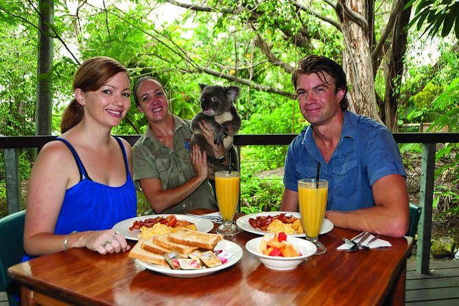 Breakfast with the Koalas at Hartley's Crocodile Park from Cairns or Palm Cove, Cairns y el Norte Tropical, AUSTRALIA