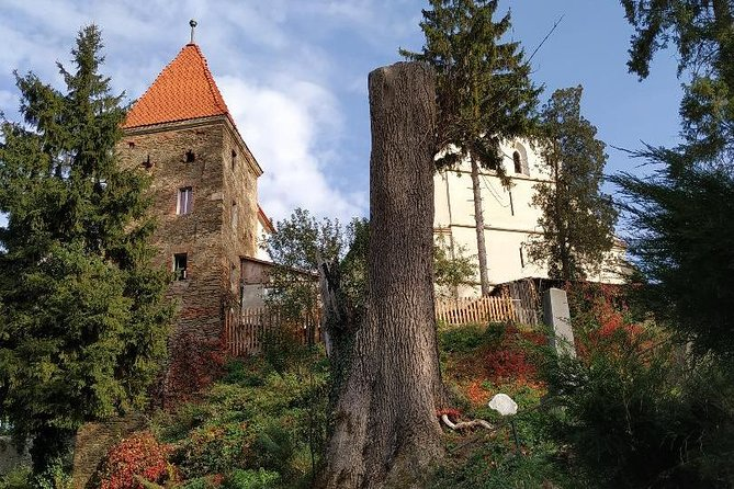 Private 3-Day Best of Romania Tour from Bucharest: Peles Castle, Bran Castle, Bears Sanctuary, Brasov, Sighisoara, Viscri, Rasnov Fortress and Snagov Monastery With Hotel Pick Up Drop Off, Bucarest, RUMANIA