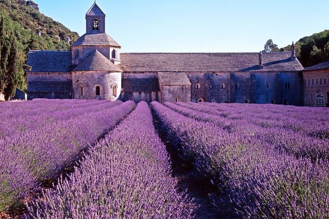 Provence Countryside Full-Day Private Tour from Nice, Niza, FRANCIA