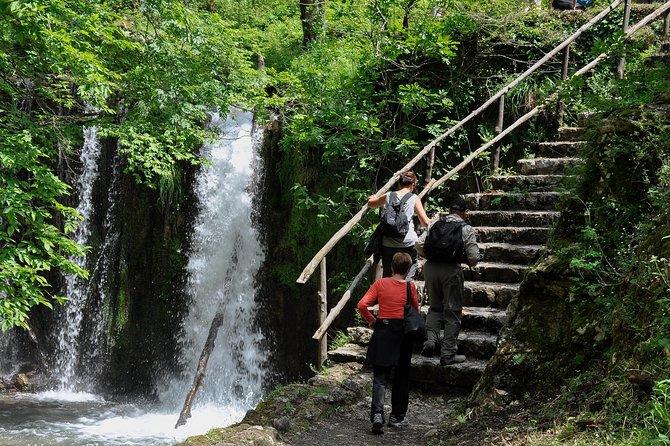 Private Tour: Amalfi Valle delle Ferriere Nature Reserve Walking Tour, Amalfi, ITALIA