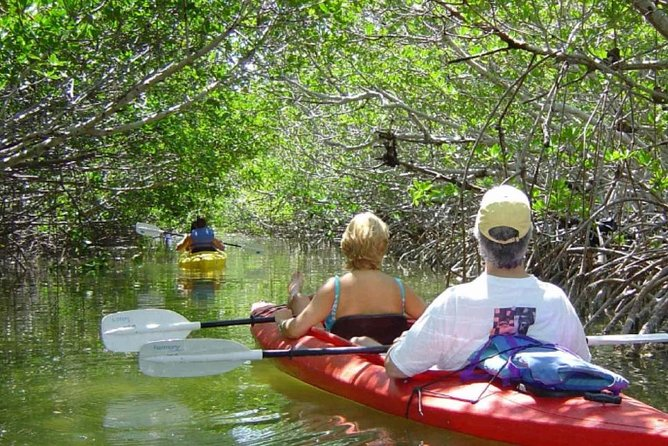 Love with unusual outdoor adventure? Try this one-off exploring Mangrove with Canoe. While the tour, you will enjoy some characteristics of the mangrove forest of Bali, including the plants and animals living there. Besides exploring the mangrove, you can also fish there. Canoe Fishing Mangrove accommodate your plan to go fishing in Bali. Don't worry if this is the first time you are fishing. There is a professional fisherman from Wanasari that already to assist you if needed. So, it's suitable even for amateur and those who'll just have their first-time fishing experience. Breath the fresh air and feel the nature Mangrove.