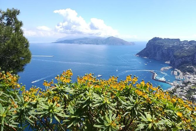 Back and forth to Capri, the Paradise on earth, second homeland for many poets and artists, who chose to live and die here. The island offers different aspects and activities. We can decide freely (according to weather conditions) how you wish to spend the day.