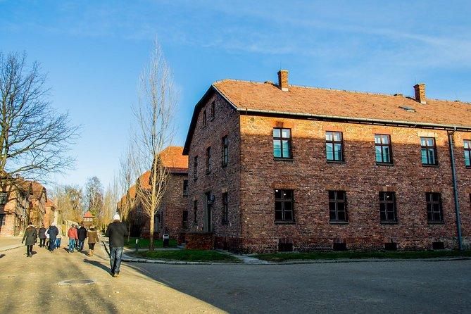 Visita guiada al Museo y al monumento conmemorativo de Auschwitz-Birkenau desde Cracovia, Cracovia, POLONIA