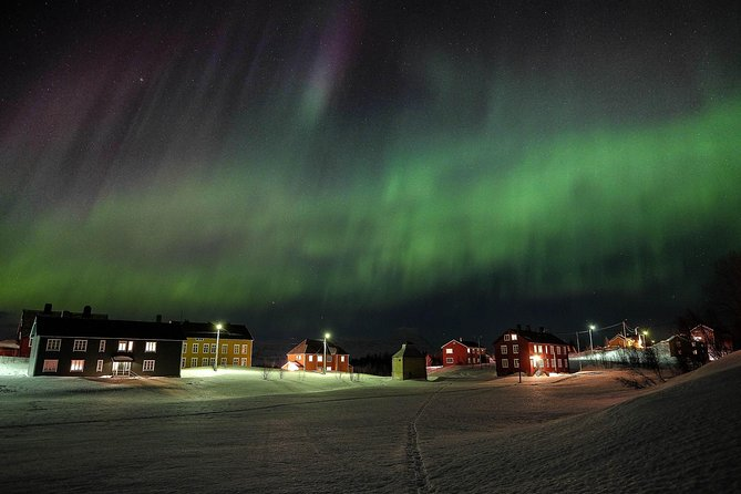 Northern Lights And Winter Experiences, Bodo, NORWAY