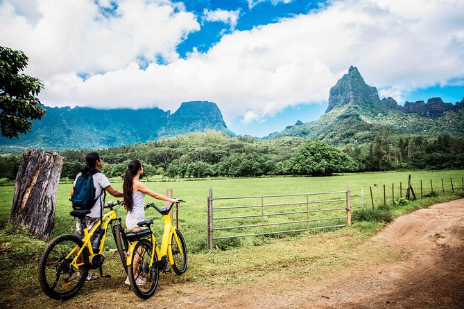 Discover the island of Moorea in an authentic way...<br><br>Let yourself be transported to the magical places of Moorea by Electric Bike<br><br>Don't be exhausted by bike and enjoy your holidays, it's possible !<br><br>From 8 to 75 years, everyone can ride this means of transport Trendy, Fun and easy to ride !<br><br>Electric Bikes will allow you to make an island tour of Moorea (62KM), explore the riches of Opunohu Bay (Belvedere Lookout, Pineapple plantations, Polynesian temples...), visit the north of moorea and these many white sand beaches and enjoy new places inaccessible until now. Create your own itinerary and follow our best advice with our map of the island ! <br><br>We offer high-end EBikes, Bosch and Yamaha engines, the Ebikes have 100 KM of autonomy.<br><br>The electric bike is the most accessible, fun and safe way to visit the roads of Moorea !<br><br>Delivery everywhere on the island <br><br>Presentation of a Visa or MasterCard credit card required for the deposit on the day of the rental.