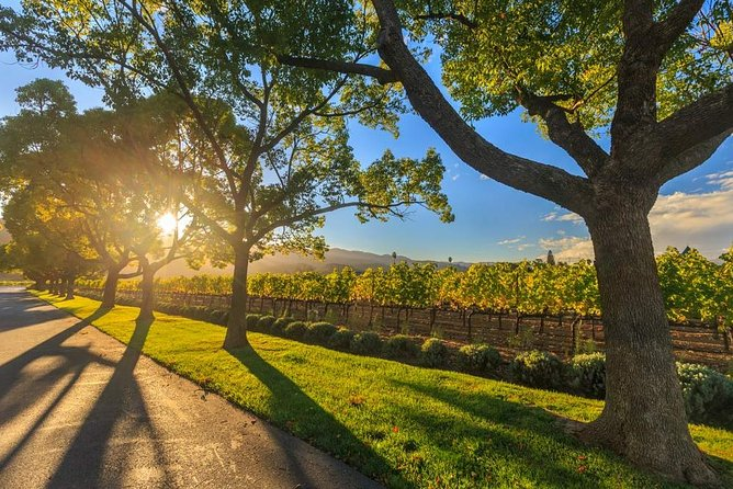 VIP Swan Valley Wine Tour: Premium Small-Group Wine and Gourmet Experience, Perth, AUSTRALIA