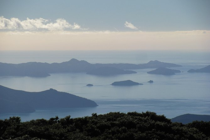 Marlborough Sounds Experience, Nelson, NOVA ZELÂNDIA