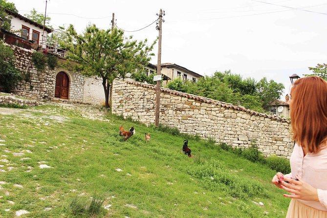 Day Tour of Berat from Tirana, Tirana, ALBANIA