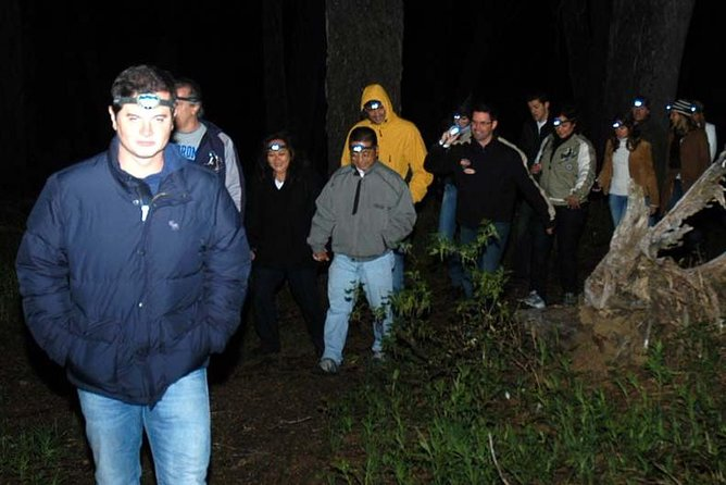 Night hiking in the woods with headlamps & Candlelit dinner, Bariloche, ARGENTINA