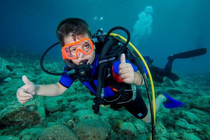 MÁS FOTOS, Discover Scuba diving in Calabria, Italy