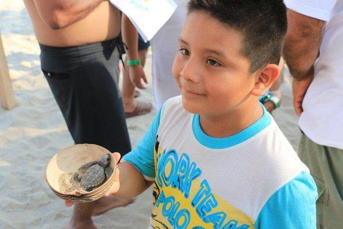 Turtle Release Escobilla Sanctuary, Huatulco, Mexico
