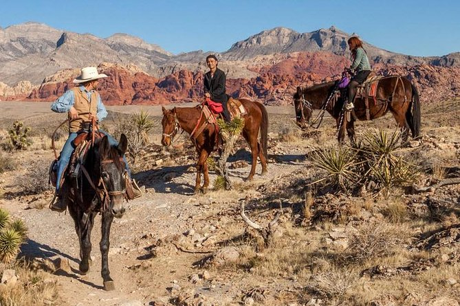 Spend your morning horseback riding through breathtaking Red Rock Canyon with your talented cowboy wranglers! Experience the beauty of the desert as you ride back down to the valley floor. This tour is perfect for both beginning or experienced riders.