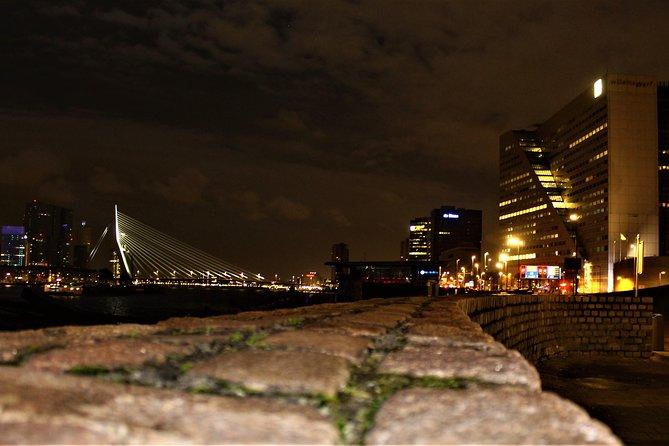 Private: All Inclusive Rotterdam Night Tour, Rotterdam, HOLANDA