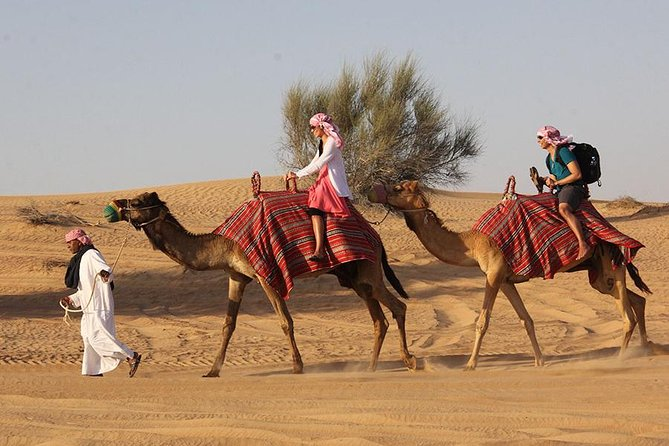 Children are 100% FREE (upto 4 years age).<br>Pick & Drop Service from various centralized meeting points in Dubai & Sharjah.<br>Best-priced Desert Safari package that offers six hours of fun and heart-stopping activities in one of the biggest deserts in the Arabian Peninsula. Desert Safari in Dubai is a mix of adventure, cultural entertainment, and sumptuous dinner under the stars. Camel Riding, Quad bikes & sandboarding is also available.<br>The real highlight of the tour is an exciting, adrenaline-pumping 4x4 Dune Bashing ride in the vast golden sands. This is followed by a visit to our traditional Arabic Bedouin campsite, which enables you to capture the real essence and beauty of the desert, as you relish traditional Arabic coffee, smoke a flavored Shisha, and enjoy belly dance, Tanura & fire shows.<br>Delicious BBQ dinner wit various veg & non-veg dishes will be served at the end.