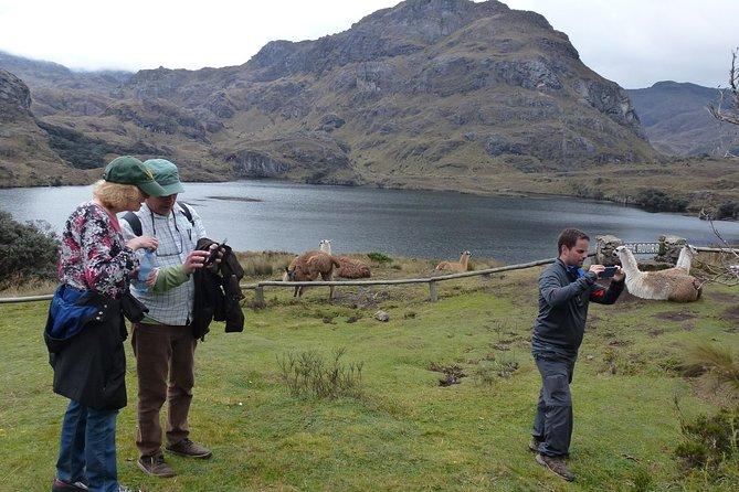 MÁS FOTOS, Cajas National Park+Turi viewpoint, Day Tour