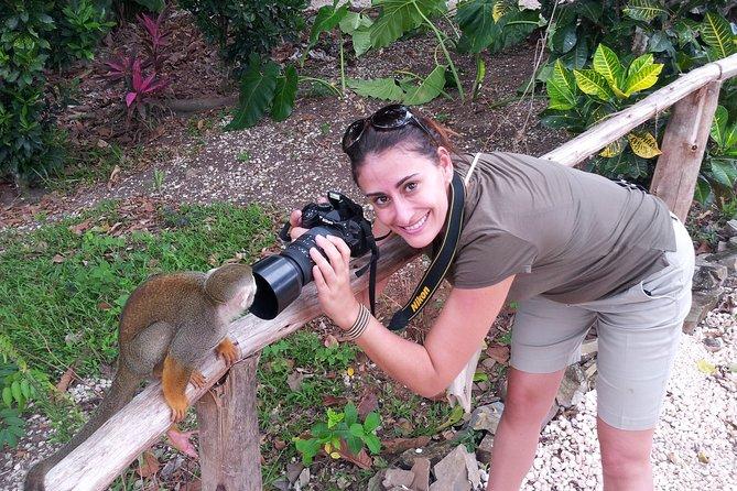 Jungle Buggies and Monkeyland from Punta Cana, Punta de Cana, REPUBLICA DOMINICANA