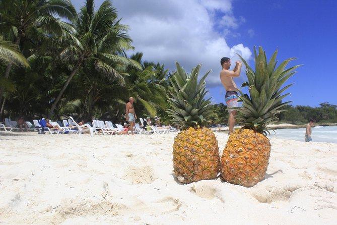 Saona Island Paradise From Punta Cana, Punta de Cana, DOMINICAN REPUBLIC