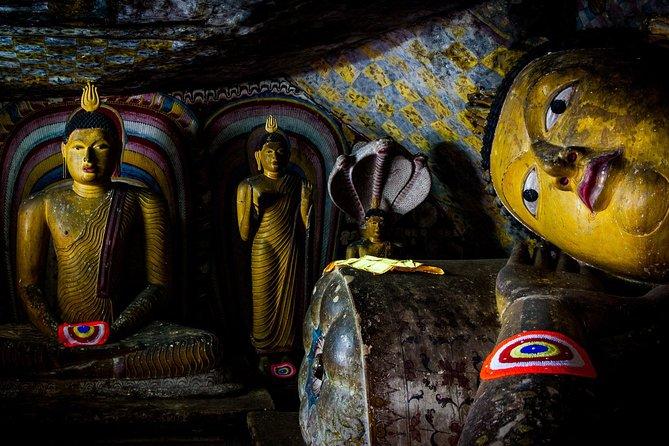 Sigiriya and Cave Temple with Pidurangala Rock - Full Day Private Tour, Sigiriya, SRI LANKA