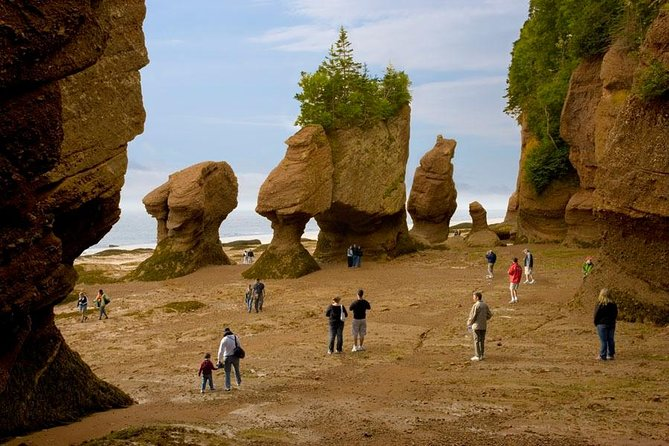 The Hopewell Rocks are located along the Bay of Fundy and are home of the highest tides in the world.An iconic and popular place for ocean tidal exploration, it offers a unique natural experience of both high and low tides. Enjoy the multi-media exhibit, scenic walking trails, informative walking tours and lookouts.<br><br>Walk on the ocean floor with towering rock formations that have been carved by the weather and the powerful incoming waters over decades. You'll want to visit the Hopewell Rocks during both high tide and low tide so you can truly appreciate the height and range of the highest tides in the world.<br><br>Nearby are Fundy National Park, Cape Enrage, Mary's Point Bird Sanctuary, Covered bridges, artisan shops, crafters, museums, quiet beaches, lighthouses, waterfalls, biking and hiking trails and more. At Hopewell Rocks, Baymount Outdoor Adventures allows you tokayak the world's highest tides around the huge rock formations!<br>