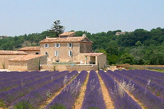 Provence and Lavander - private & Guided Full Day Tour, Niza, FRANCIA