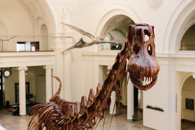 Passe de acesso total para o Museu Field de História Natural, Chicago, IL, ESTADOS UNIDOS