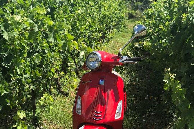 Excursión en Vespa por Siena con almuerzo en una bodega Chianti, Siena, ITALIA