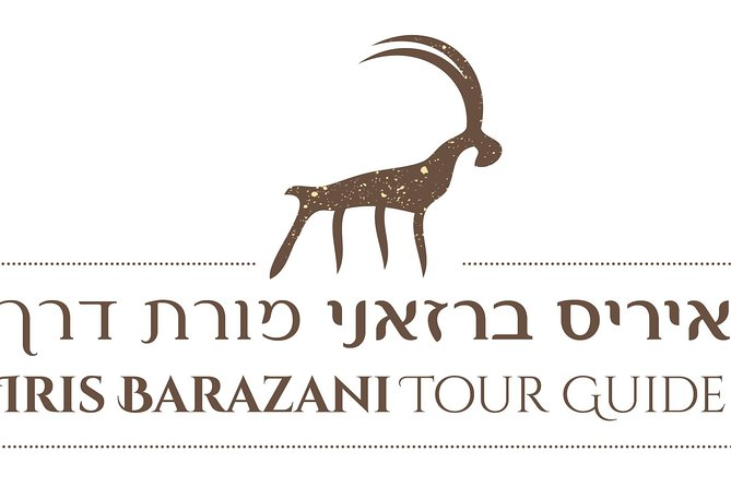 Secrets of a Hidden City - Theatric Tour in Shivta National Park, Sde Boker, Israel