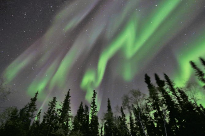 Yellowknife Northern Lights Tour Winter 3 Days 2 Nights All Inclusive, Yellowknife, CANADA
