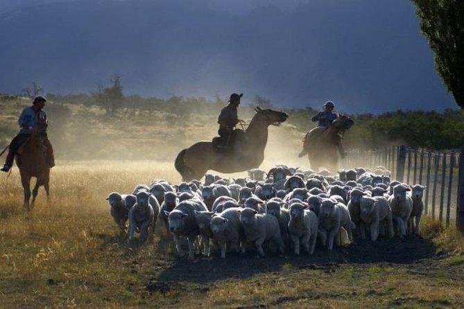 Día del rancho Nibepo Aike y cabalgata desde el Calafate, El Calafate, ARGENTINA