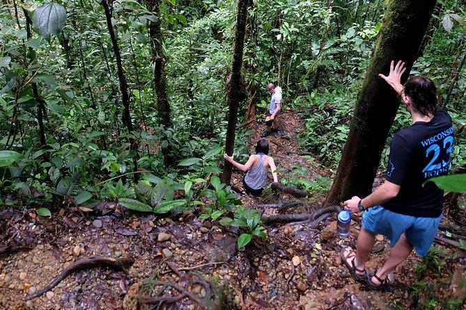 Aventura en el río: disfrute de una tarde de naturaleza y tubing en San Cipriano, Cali, COLOMBIA