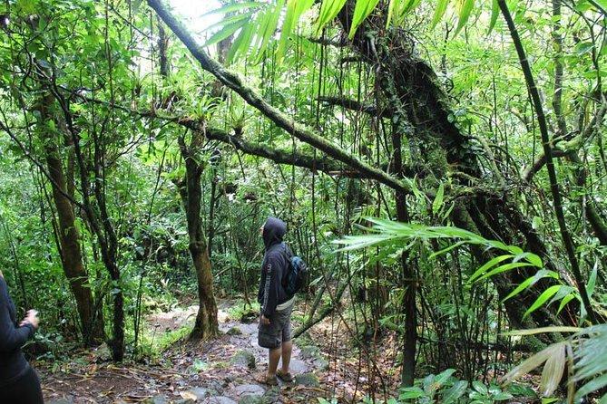 15-Day Hiking Nicaraguan Volcanoes, Managua, NICARÁGUA