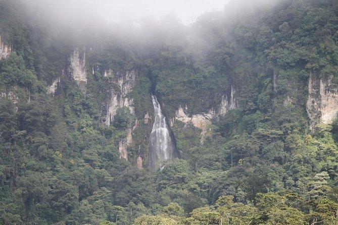 Peñas Blancas and Bosawas, Managua, NICARAGUA