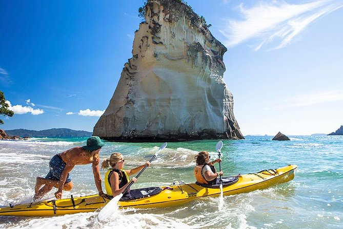 7-Day North Island Adventure Tour - Auckland to Wellington Return, Auckland, NUEVA ZELANDIA