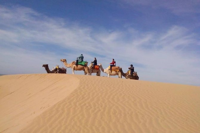 3-hour Dromedary Ride in Essaouira with Diner and Overnight, Esauira, Morocco