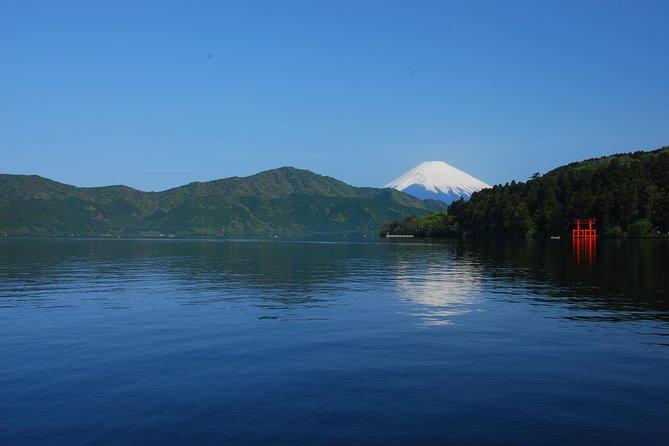 Mt Fuji and Hakone 1-Day Bus Tour return by Bullet Train (Shinkansen), Tokyo, JAPON