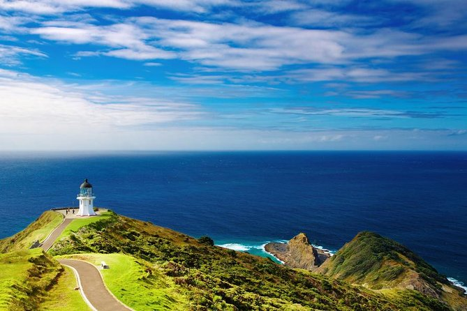 """This comprehensive 3-day tour of the Bay of Islands is ideal for the first time visitor to New Zealand. With natural beauty, rocky islets and pristine beaches, the Bay of Islands is the water playground of the North Island. Learn about Maori culture, travel to the northernmost point of New Zealand and take a cruise through the famous """"Hole in the Rock""""."""