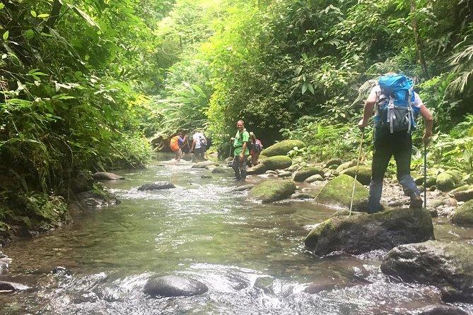 3 días y 2 noches en la selva de Darién su exploración de la ciudad de Panamá, Ciudad de Panama, PANAMA