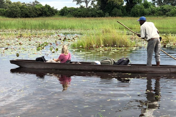 The non-participatory mokoro safari takes you to the Okavango Delta where you will witness a combination of aquatic wildlife, amazing bird species, breath taking landscapes, tranquil sunrise and sunsets, and amazing star gazing; all in all summed up in one word: unforgettable! We will visit the Eastern delta in a community controlled wilderness area. We work with some of the most experienced Polers who have mastered the channels as well as being astute in coexisting with aquatic and land wildlife. Did we mention the nature walks and how those make you just part of the ecosystem?