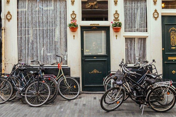 Recorrido en bicicleta privado en Ámsterdam con un guía local, Amsterdam, HOLANDA