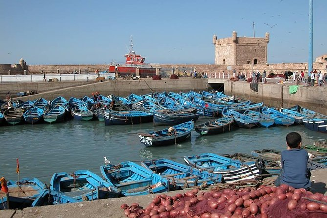 Marrakseh 1 day trip to Essaouira, Esauira, Morocco