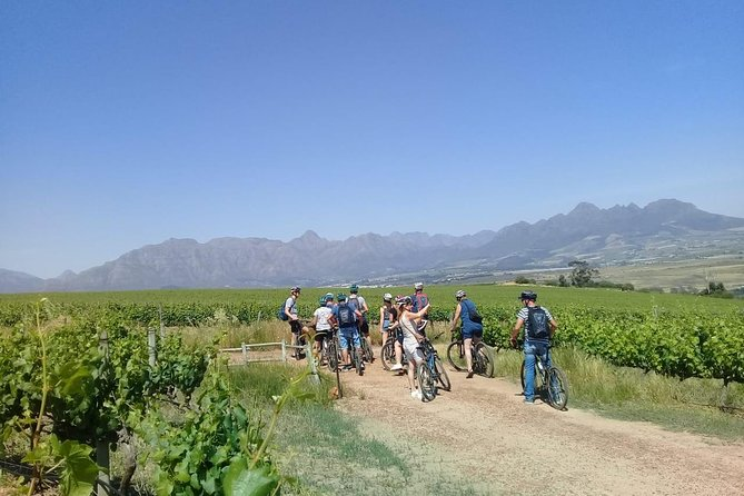 Stellenbosch Winelands Guided Luxury Cycle Tour, ,