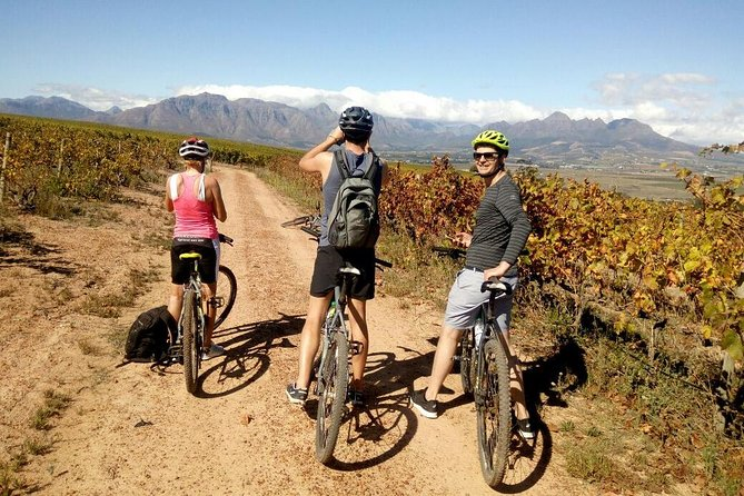 Stellenbosch Winelands Luxury Cycle Tour ©, ,